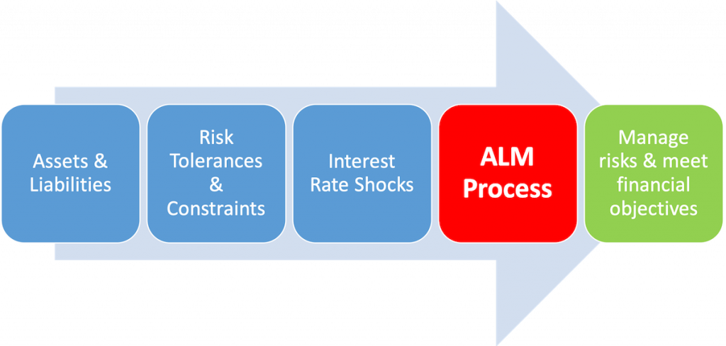 Introduction to Asset Liability Management - Process