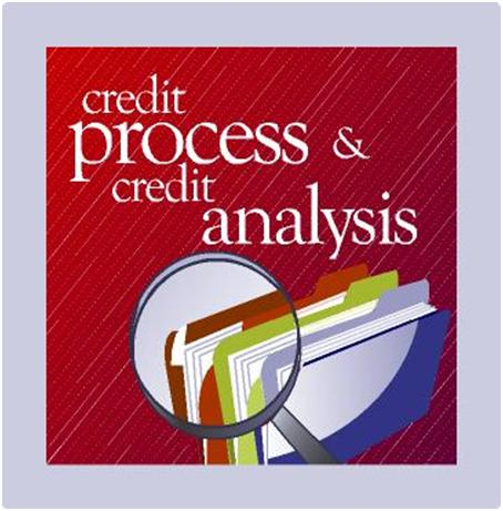 Credit Process and Credit Analysis