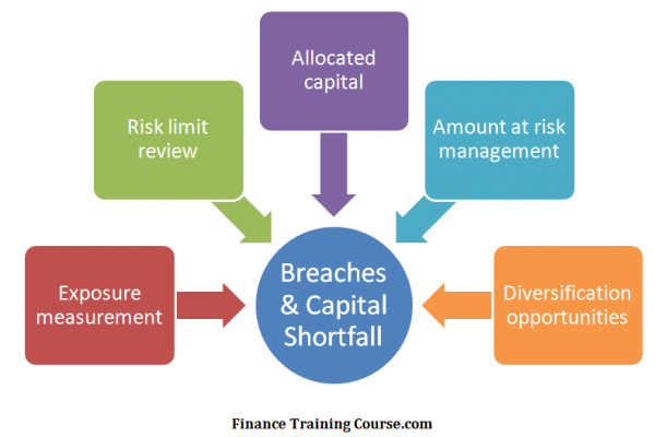 Economic Capital Model