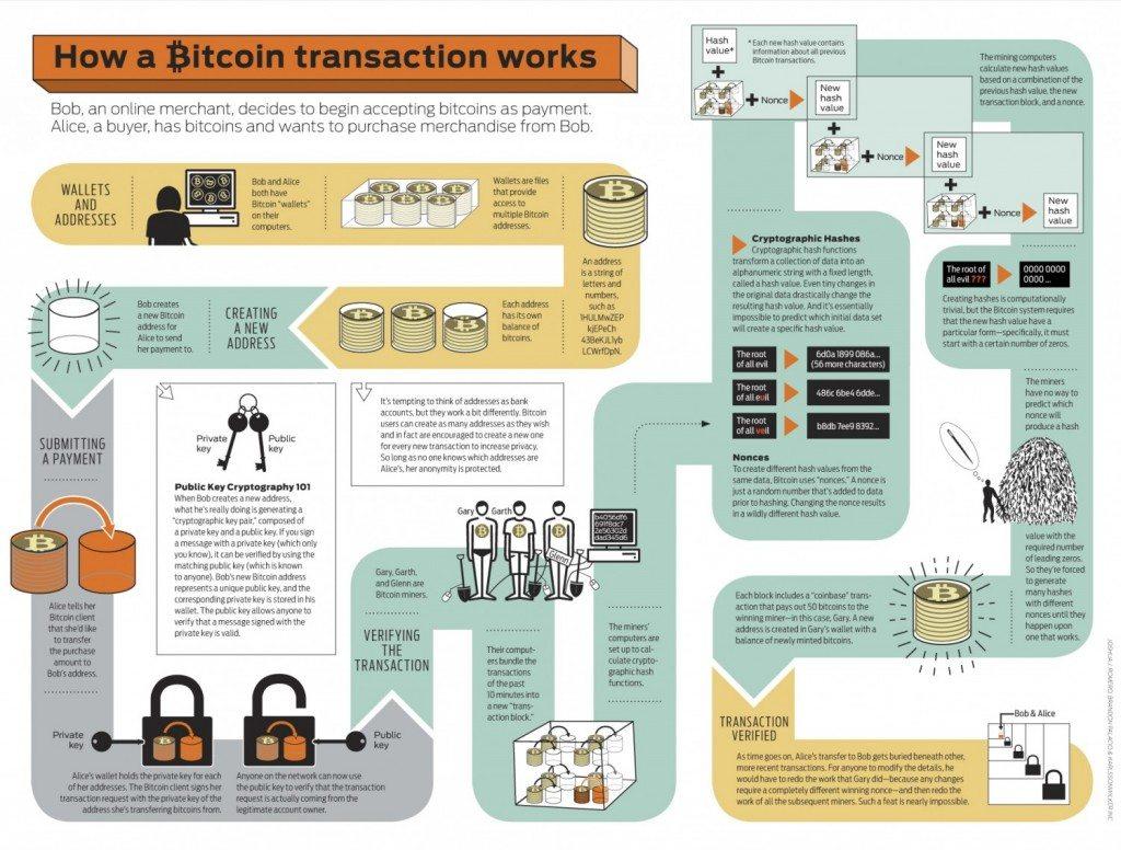 bitcoin-infographic_5029189c9cbaf_w1500