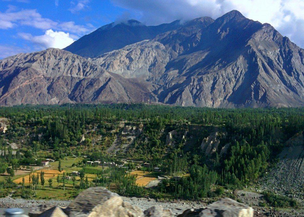 Gilgit-Tendrils-2