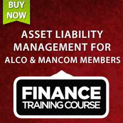 Asset Liability Management Training Guide. 3rd Edition.