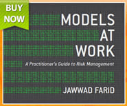 Models at Work - A Practitioner's Guide to Risk Management